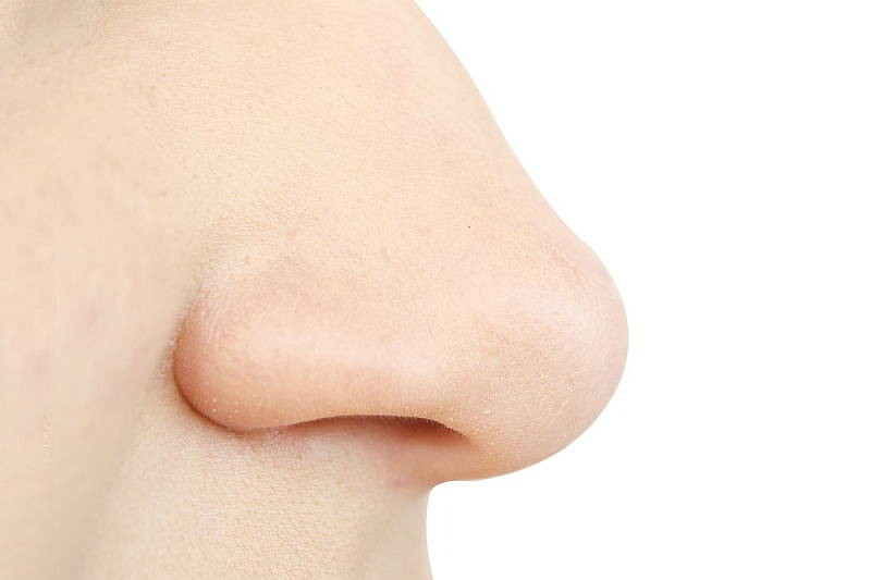 the-amazing-human-nose